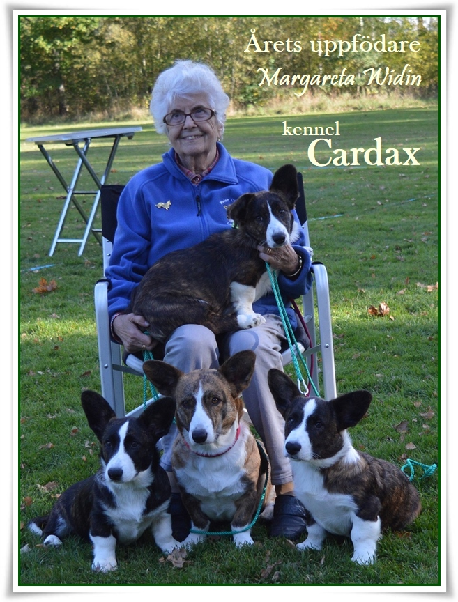 Stort GRATTIS Cardax i samarbete med Nickname´s